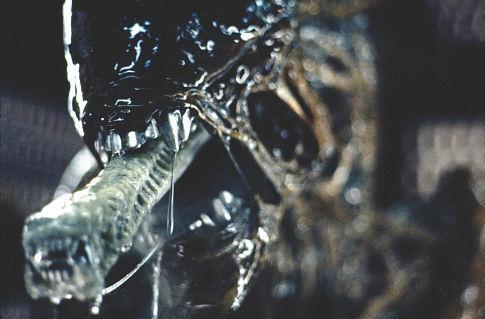 Alien%208.jpg